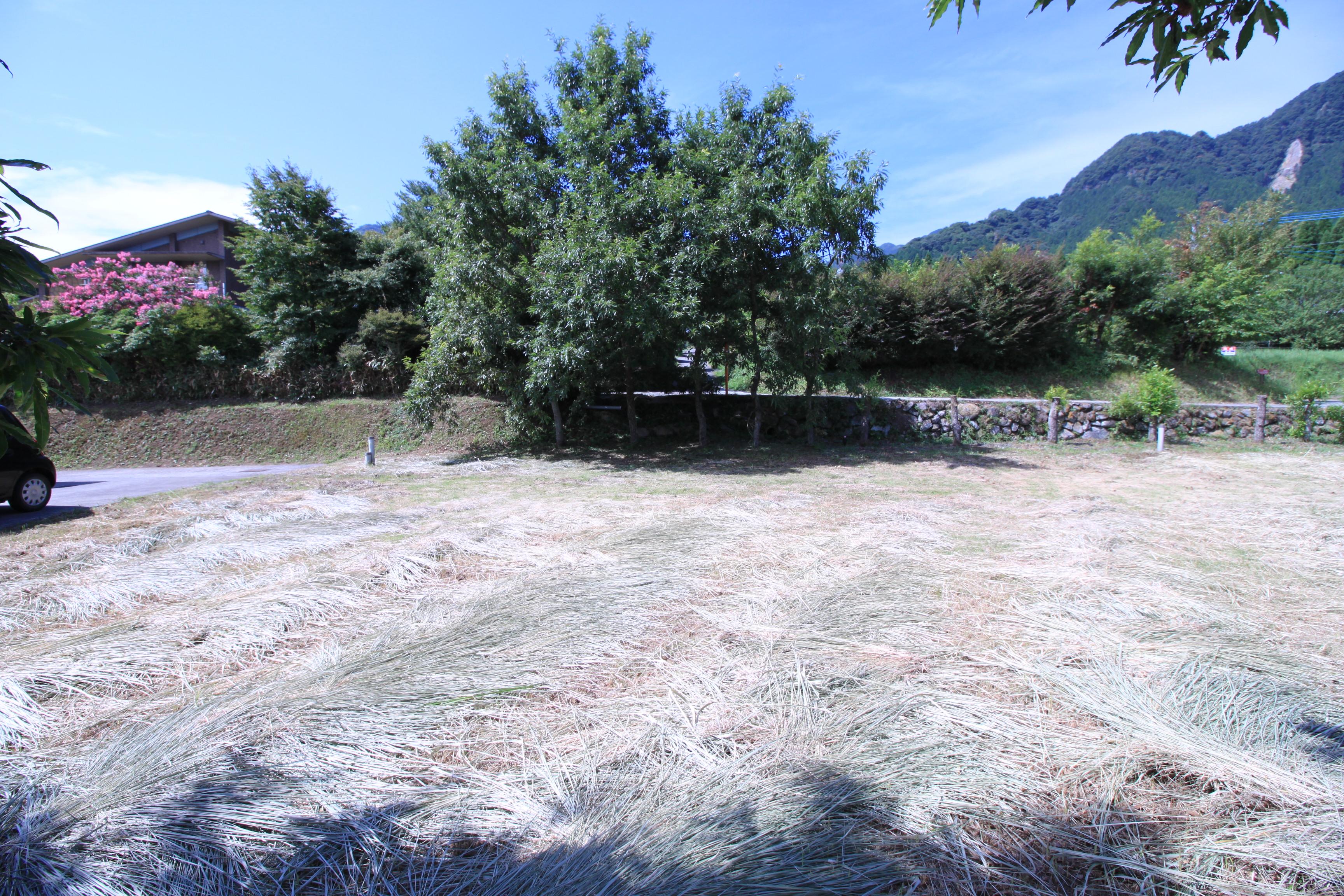 敷地より南西側の風景