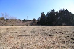 敷地東側の風景