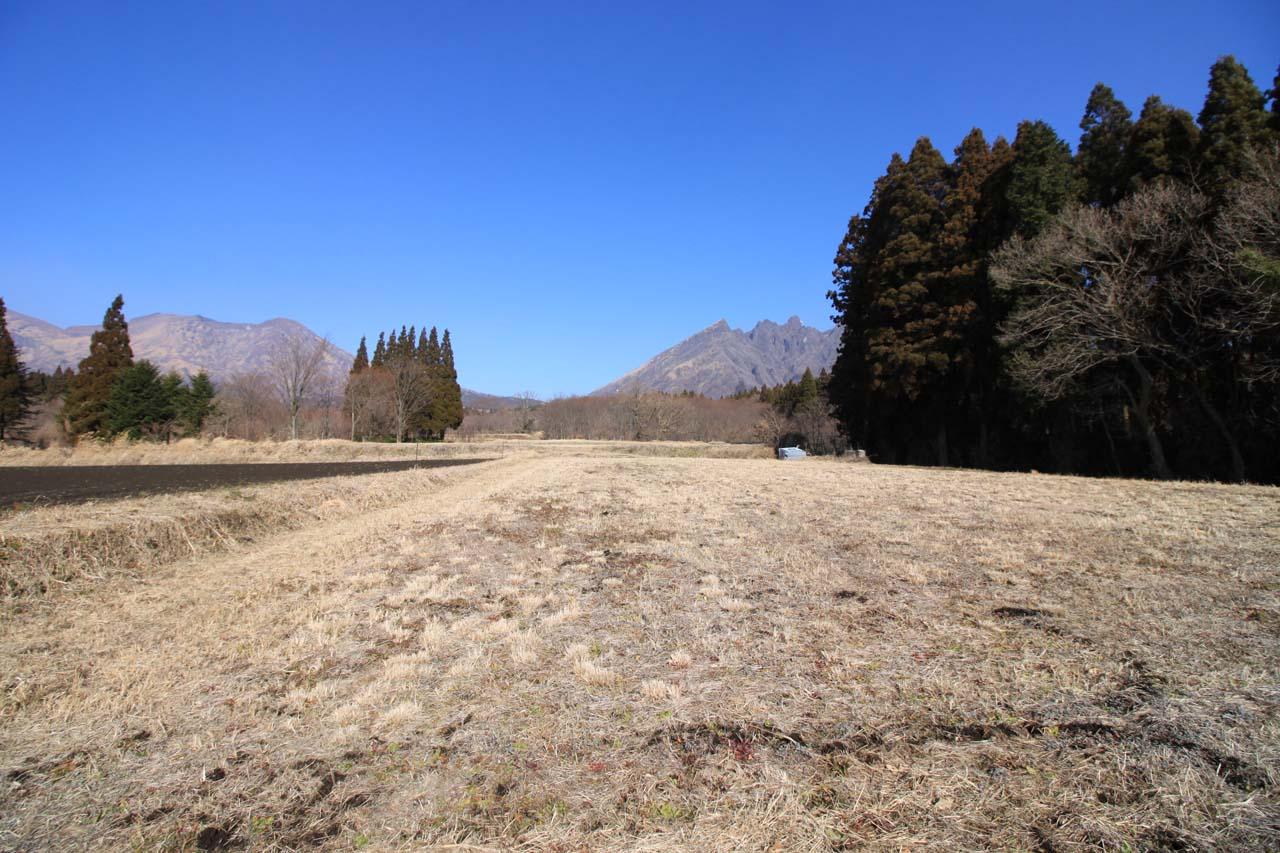 敷地から見た北側の風景