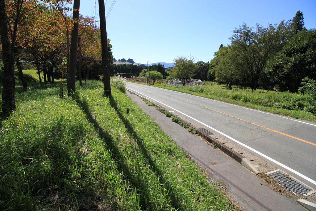 西側の国道265号線