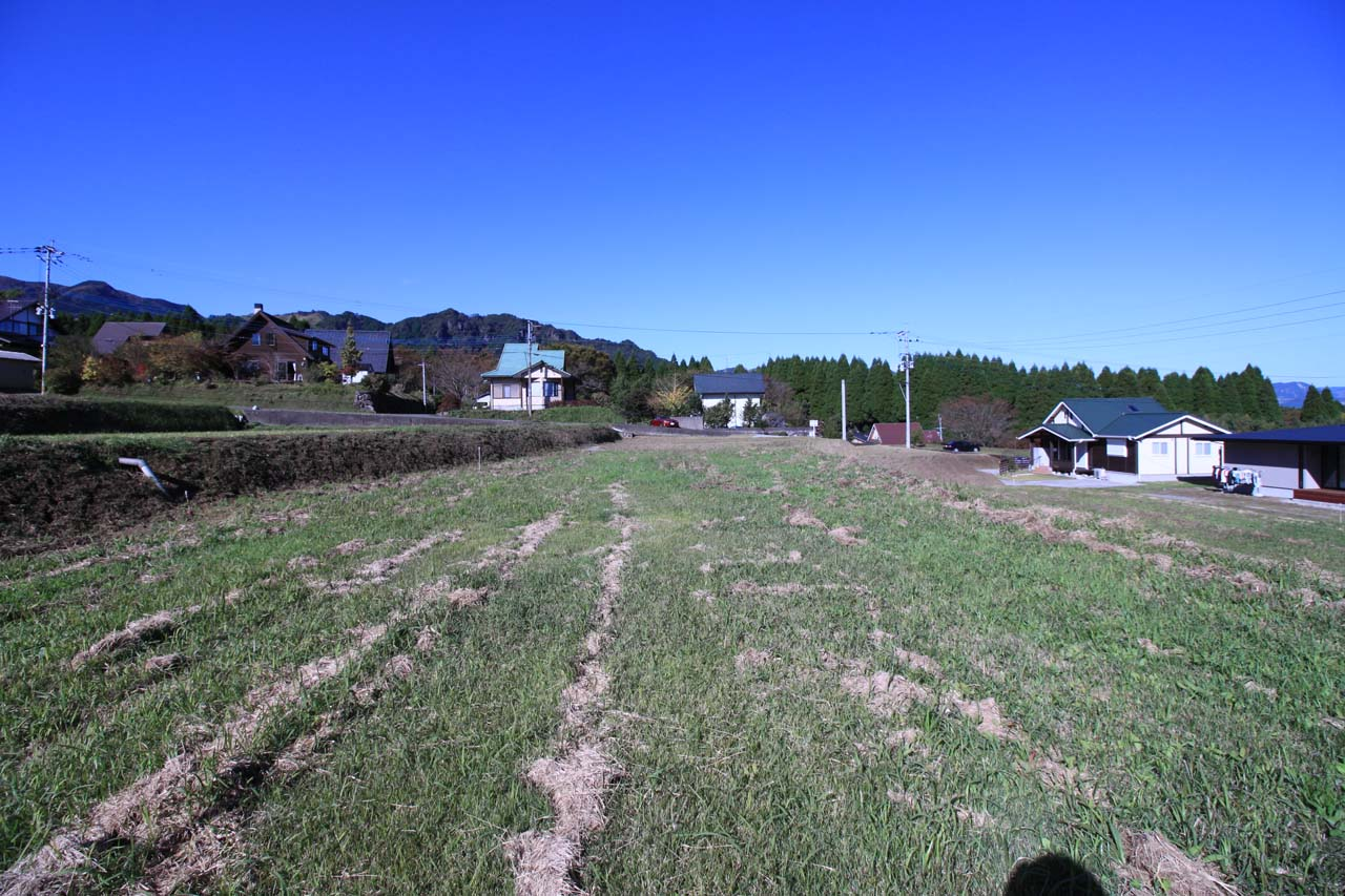 敷地西側の風景