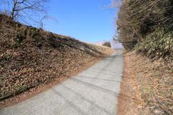 敷地東側の道路と法面