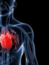 Exercise program for heart failure