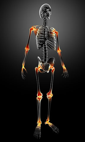 Exercise program fo join pain