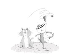 B&W cat and badger
