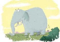 elephant test yellow