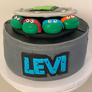 Dallas Ninja Turtles cake
