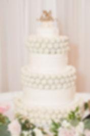 Dallas Cakepop cakeball cake