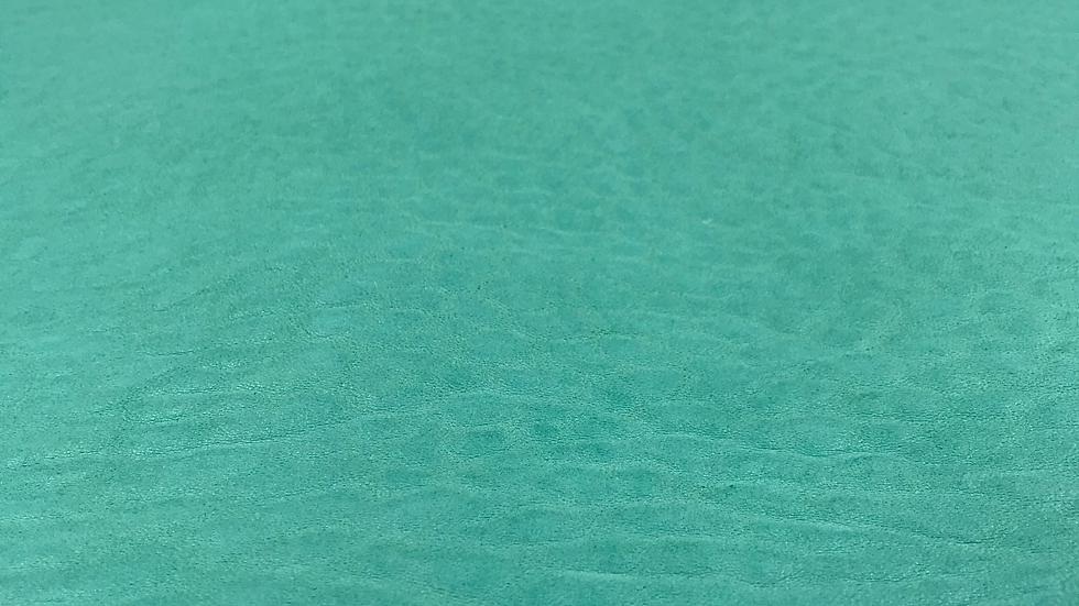 Merino Leather - Spearmint