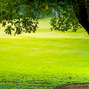 Košnja trave - Brežice