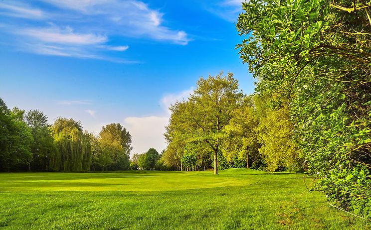 trata krško - nega dreves, grmov in zele