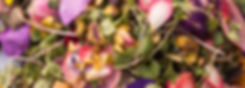 IMG_9952_edited.jpg