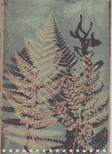 monoprint ferns
