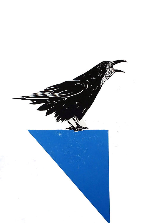 Rook calling on a Blue Triangle