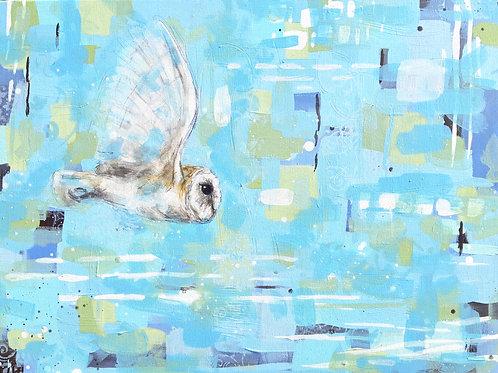 Tomorrows Conscience - Barn Owl 60 x 80 cm on canvas