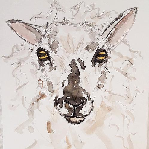 Gorgeous Desmond  Sketch