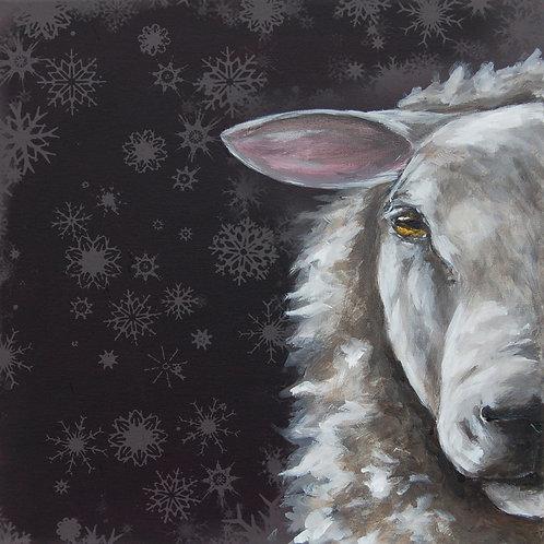 Half Hidden Kevin Texel Sheep Christmas Cards
