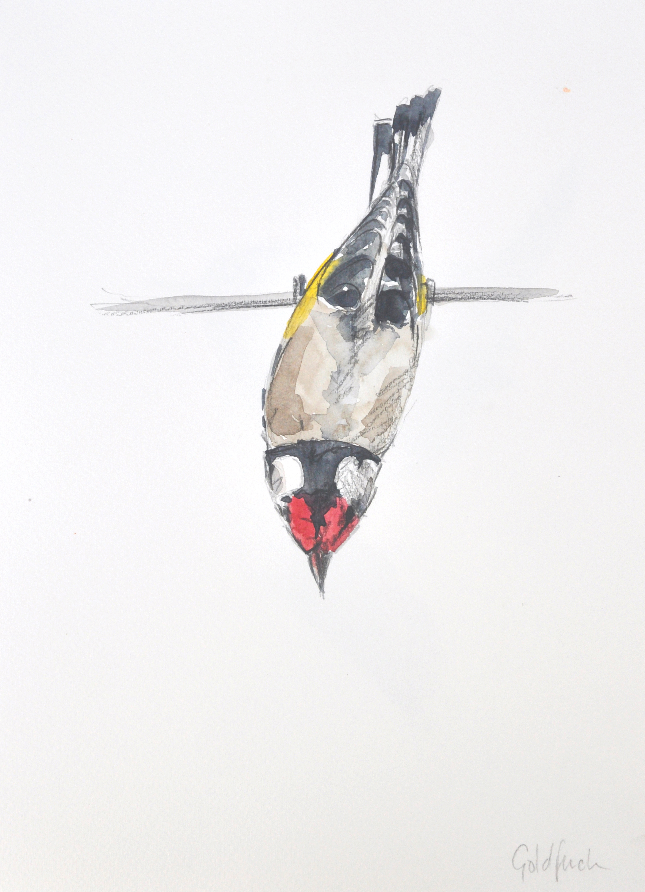 Goldfinch Wildbird Watercolour Painting
