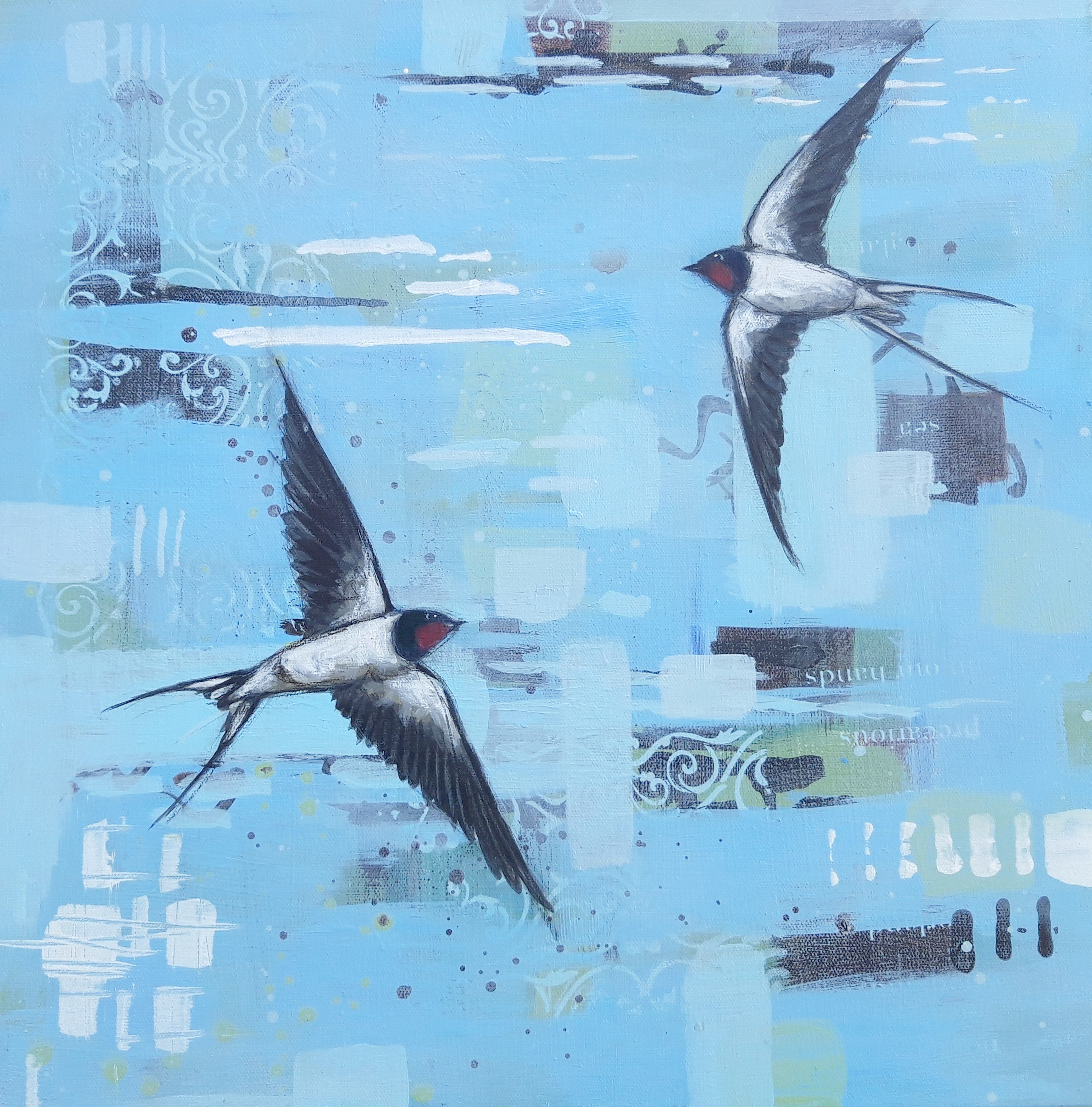 Swallows dip & Turn 50 x50