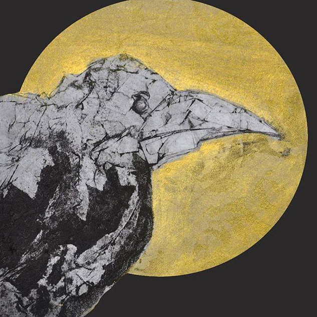 rook collagraph