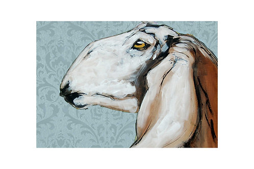 Anglo Nubian Goat with Blue Grey Print