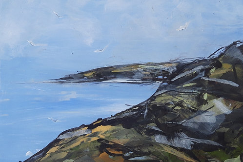 North Coast with Gulls Original Painting