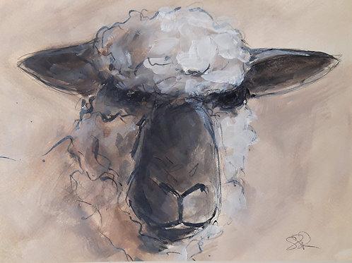 Oxford Down Sheep Original Painting