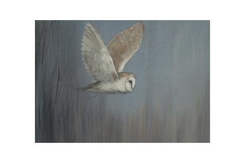 Dusk Owl Print