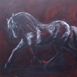 Dark Horse 80 x80