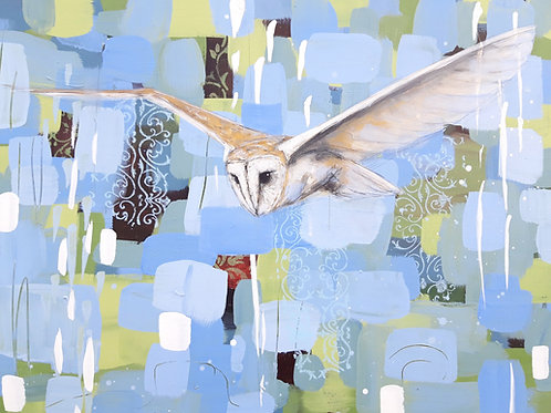Nothing but Light - Barn Owl 60 x 80 cm on canvas