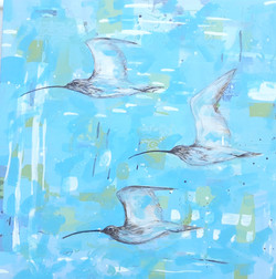 Call of the Curlew  80 x 80 cm