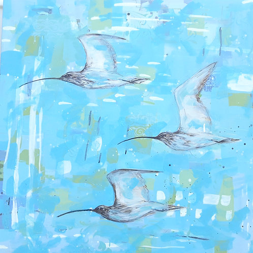 Curlews Song - 80 x 80cm on canvas