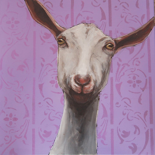 Set of  5 Goat greetings cards