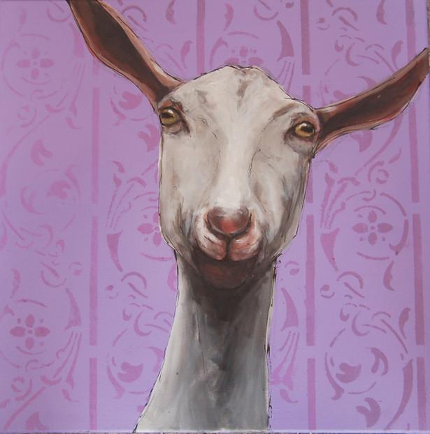 Interior Goat