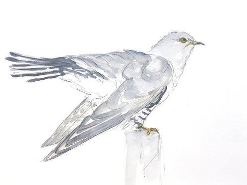 Cuckoo Original Painting