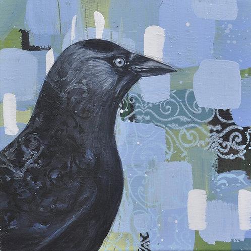 Trice Happy Bird - Jackdaw on Canvas