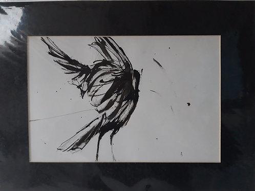 Crow for Karen