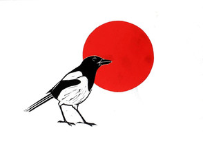 magpie and the red sun