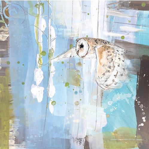 Ghost Barn Owl