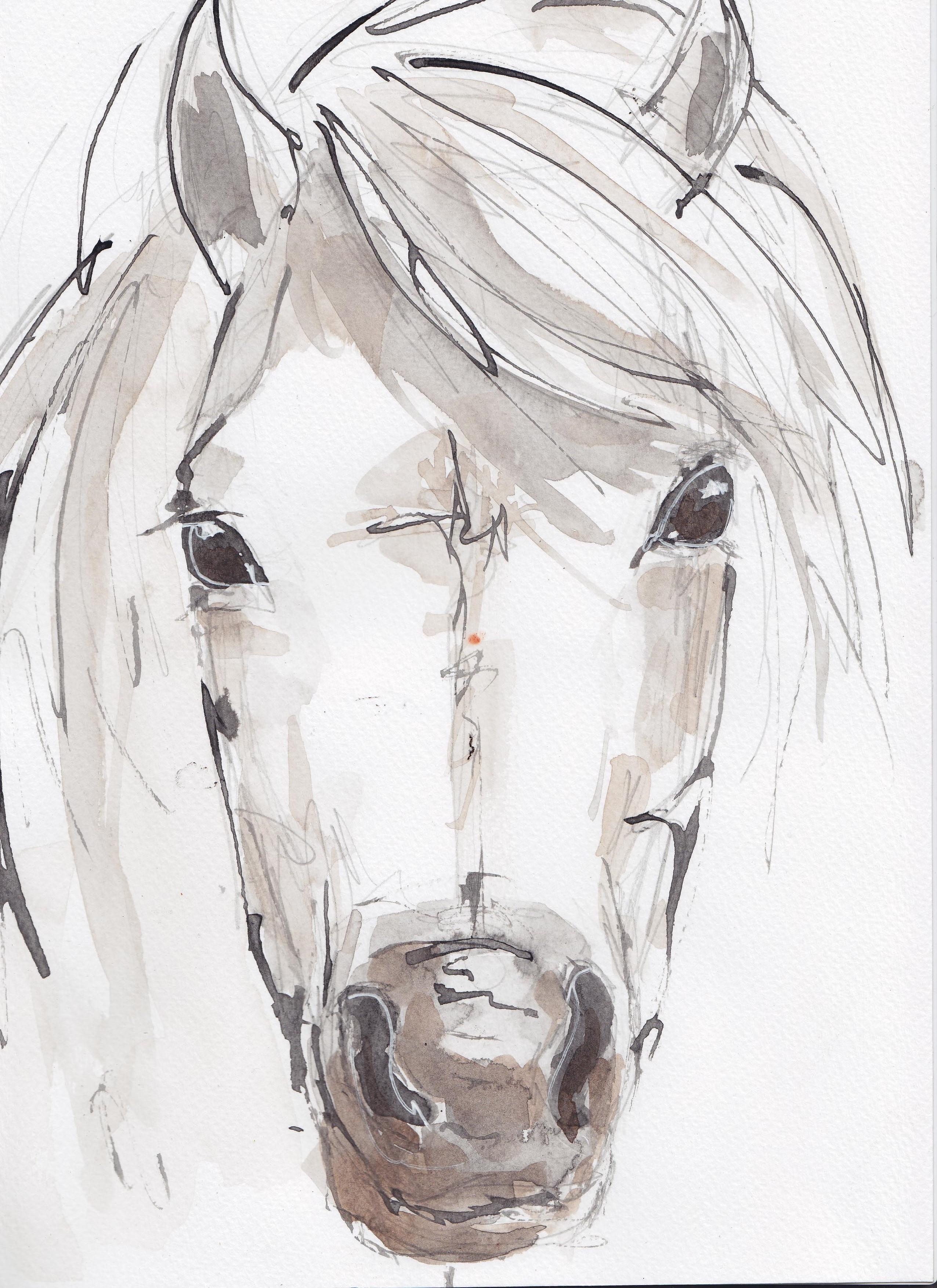 27 Welsh Pony copy.jpg