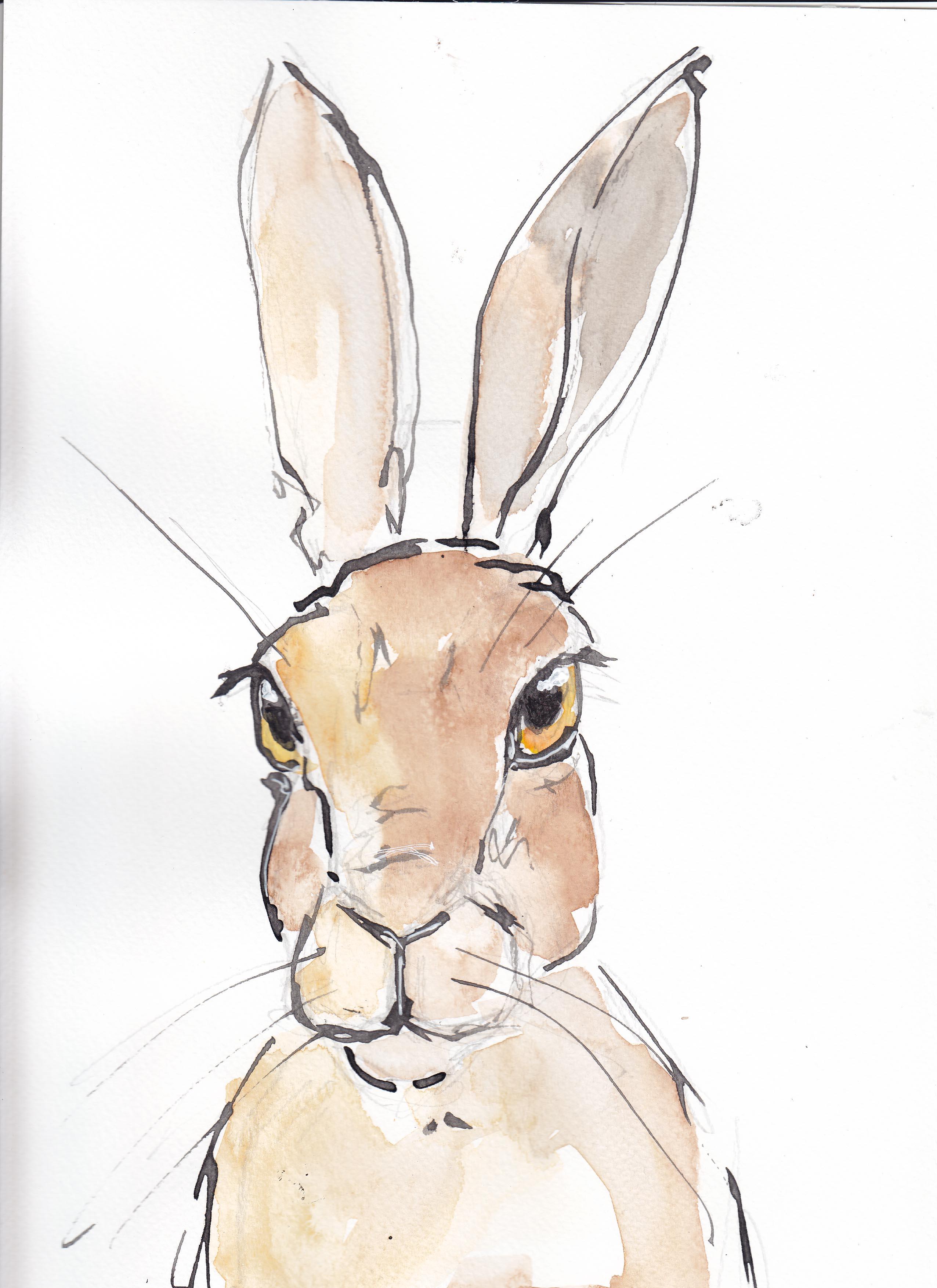 19 Hare 2 copy.jpg