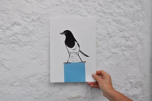 Magpie on a Blue Plinth