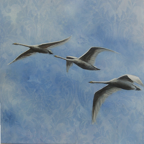 Flying Pattern