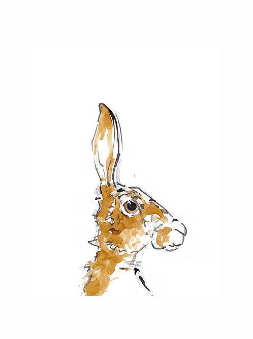 Thomas the Hare Print