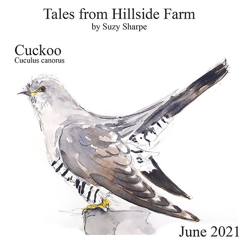 copy of Tales From Hillside Farm & Cuckoo Bird of the Month