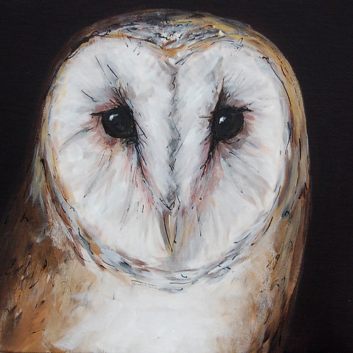 Close Owl
