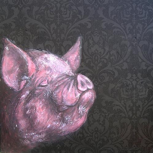 Middlewhite Pig