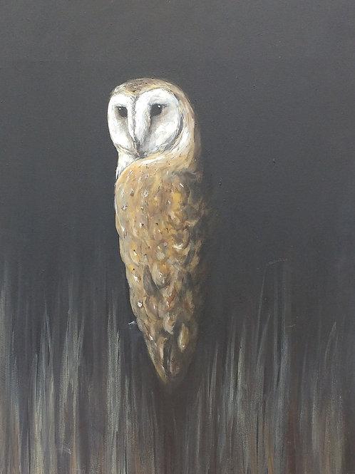 Barn Owl Painting on Canvas