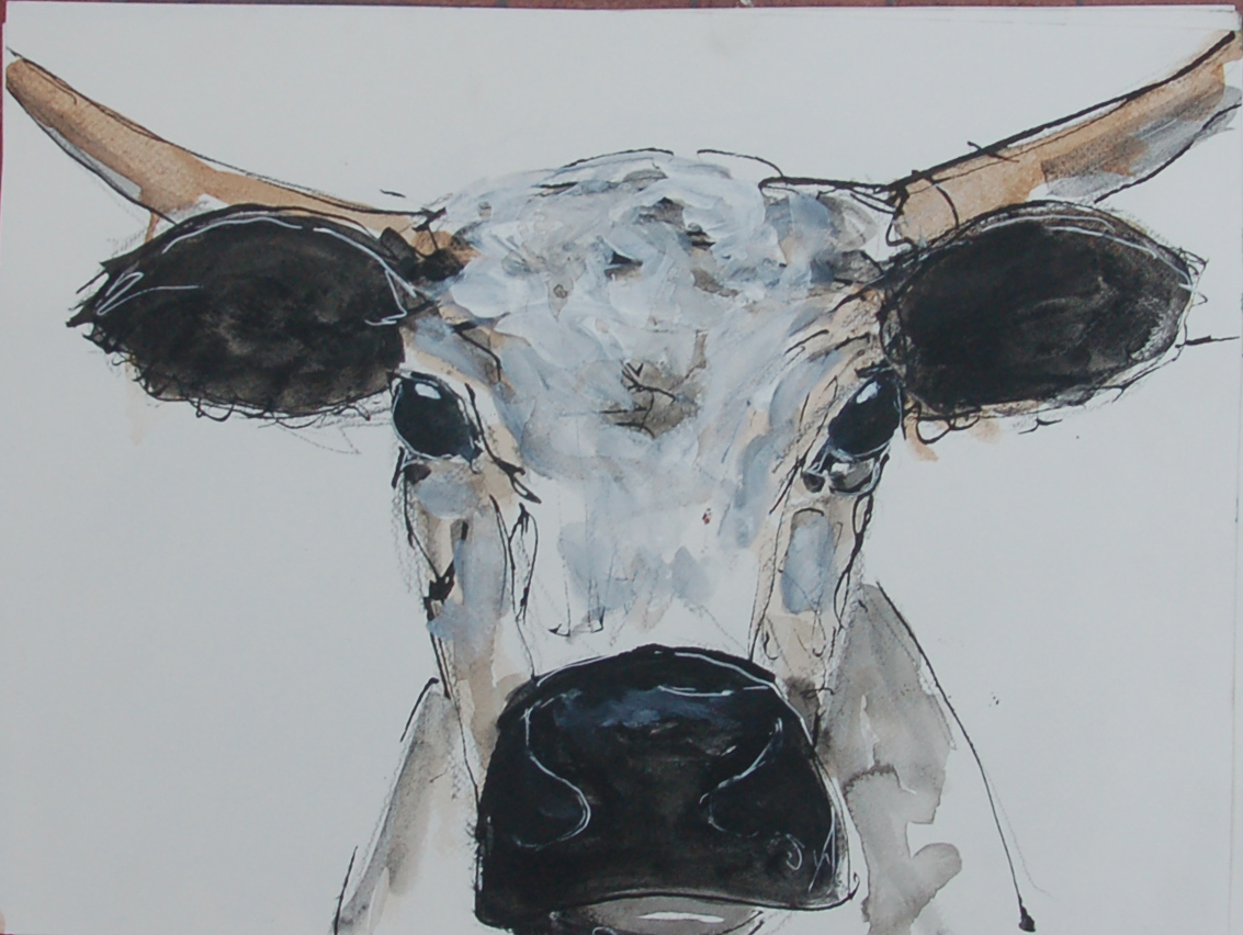21 cow (8).JPG