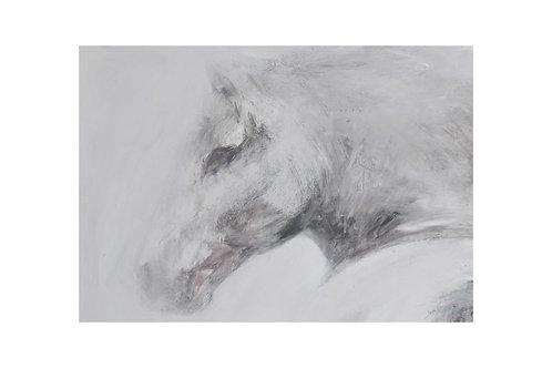 Mist Horse Print
